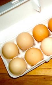 Horn's Farm Eggs Cordell