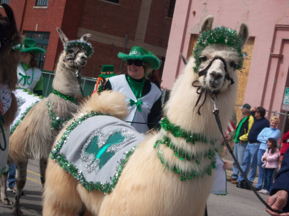 Image Credit: OKC Saint Patrick's Day Parade
