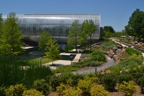 Photo courtesy of Myriad Botanical Gardens