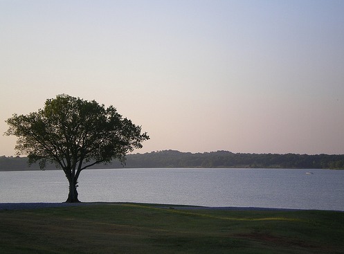 Romantic picnic at dusk with a lake view. Photo of Lake Thunderbird State Park via theport-ok.com